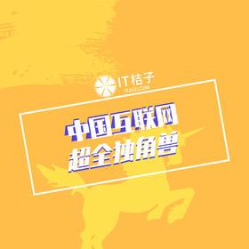 中国互联网独角兽公司榜单数据包