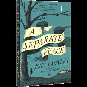 独自和解 英文原版青春小说 A Separate Peace 一个人的和平 全英文版进口英语书籍 另一种和平 电影原著 可搭麦田里的守望者正版