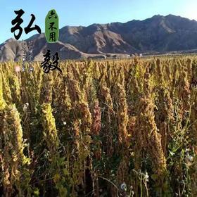 【弘毅六不用生态农场】六不用白藜麦 熬粥 蒸饭 1斤/份