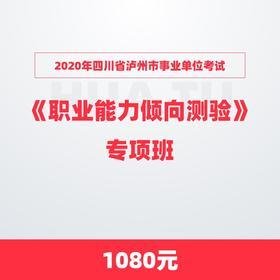 2020年四川省泸州市事业单位考试《职业能力倾向测验》专项班