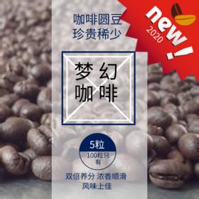 碧罗庄园PB305中高烘焙阿拉比卡精品咖啡圆豆