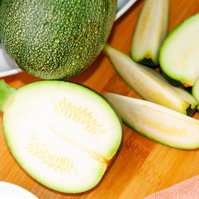 5斤装云南蔬菜圆小瓜 圆润饱满 云南特色蔬菜 产地新鲜采摘