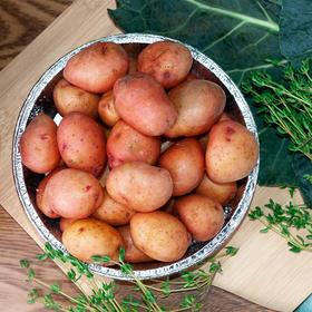 新鲜软糯的云南红皮小土豆 高海拔自然生长 口感细腻 产地现摘新鲜直达 2/5斤装