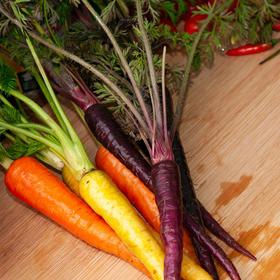5斤装云南三色拇指胡萝卜 鲜香脆嫩 细嫩饱满 色泽鲜亮 风味独特
