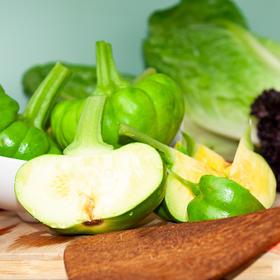 3斤装云南蔬菜姜柄瓜 青皮饱满 果肉白嫩 云南特色产地现摘新鲜发货