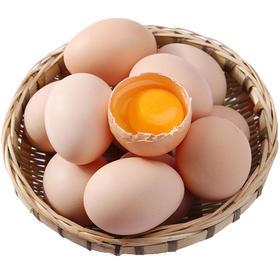 【河南】新鲜初生蛋散养土鸡蛋营养丰富20枚/30枚装