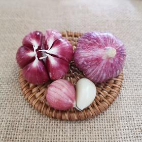 云南紫皮多瓣蒜 蒜粒饱满 味浓香辣 现摘先挖新鲜直达 3/5斤装