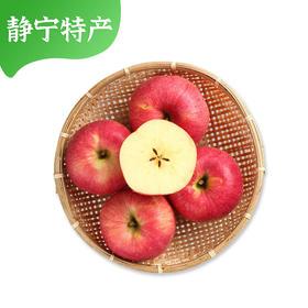 甘肃名产 静宁苹果 金果传情 天然种植皮薄肉厚多汁
