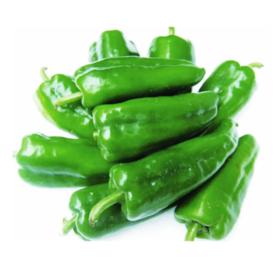 青椒  500g