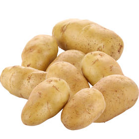 土豆  500g