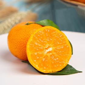 清甜爆汁的广西武鸣砂糖桔 皮薄肉厚 细嫩化渣 产地现摘新鲜直达  5/9斤装
