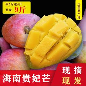 助农抗疫 我们在行动】贵妃芒果 软嫩细腻 肉厚汁多 香甜可口 产地现摘新鲜直达可食率99.9% 当季芒果