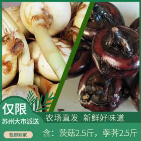 水八仙-荸荠+茨菇  混合共5斤装(茨菇荸荠各2.5斤,每人每天限购5斤,次日发)
