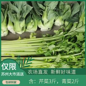 润绿生态园-蔬菜组合(青菜、芹菜)  共5斤装(每人每天限购5斤,次日发)