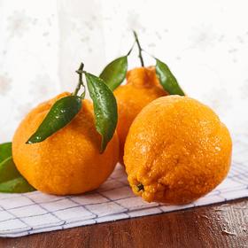 顺丰直达 四川春见耙耙柑不知火丑橘  果汁糖度在13%~17% 新鲜当季水果 易剥皮 味道清甜
