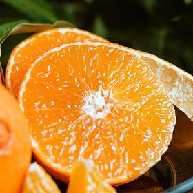 【安全购物】爱媛38号果冻橙3斤装