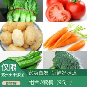 惠健  蔬菜组合A/B套餐可选(次日发)