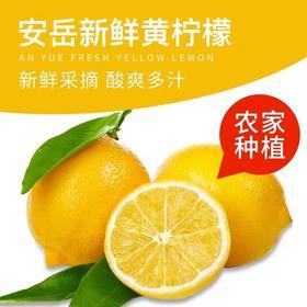 [3下]安岳新鲜黄柠檬