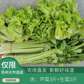 润绿生态园-蔬菜组合(芹菜+生菜)  共5斤装(次日发)