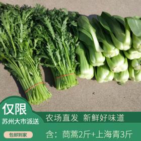 肖甸湖- 茼蒿2斤+上海青3斤(次日发)