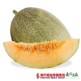 【珠三角包邮】海南西州蜜3-4斤/ 个  2个/份