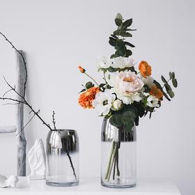 北欧简约创意渐变透明玻璃花瓶摆件轻奢插花干花清新桌面装饰品