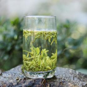 【醒世·乌蒙甘露】早春绿茶100g一罐,明前特级浓香,耐泡!