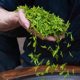 【现货|卢新】头采级明前龙井 丰子恺联名 2020年新茶 预计3.25日开始发货