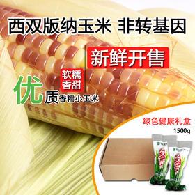 【糯】西双版纳香糯小玉米3斤装 优质玉米 新鲜开售