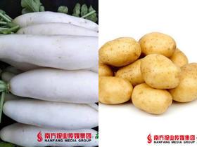 梅州富硒白萝卜5斤±2两+梅州富硒土豆 2斤±2两   一箱 (24号到货)