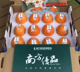 【一件代发】启迪玫瑰柑 4斤±2两/箱 (26号到货)