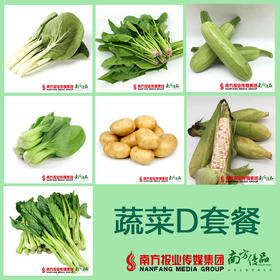 南方优品精品菜D套餐 约4500g/份  (24号到货)