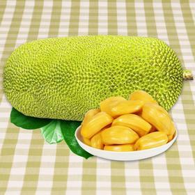 三亚菠萝蜜新鲜大树木菠萝 22-30斤海南应当季热带水果