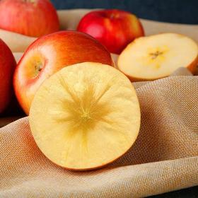 【安全配送】5斤阿克苏冰糖心苹果