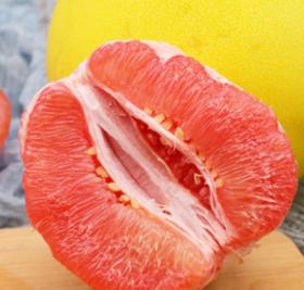 【安全配送】红肉蜜柚8~9斤装[3~4个]
