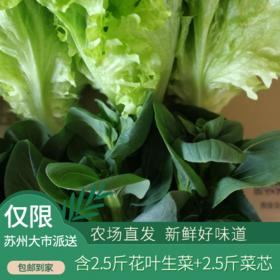 北联-本地花叶生菜+菜芯  5斤装(次日发)