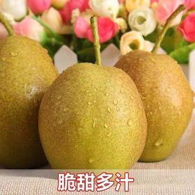 【安全配送】库尔勒香梨24斤