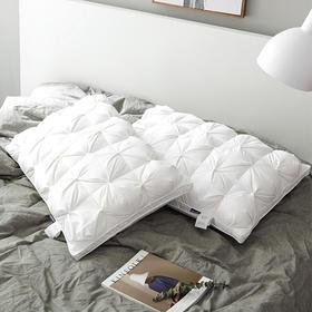 尤帛尼鹅绒枕芯 | 1000g白鹅绒,软而不塌,五星酒店的睡感