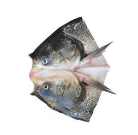 【安全配送】鱼头400~500g