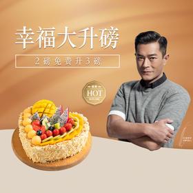 【南京幸福大升磅,2磅免费升3磅】热卖明星蛋糕,4选1,3磅仅售2磅价格,免费配送上门。