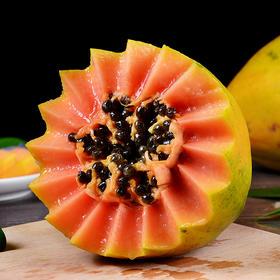 广西现摘红心木瓜 农家自然风味 果香浓郁 鲜甜多汁 果形圆润  9斤装