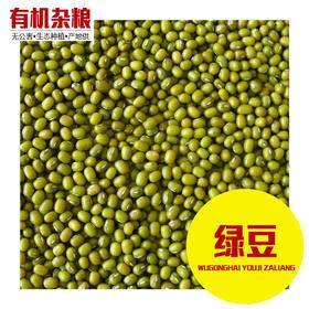 绿豆 2斤装 绿豆汤 绿豆粥 豆沙 可发豆芽 打豆浆 有机杂粮粗粮-865306