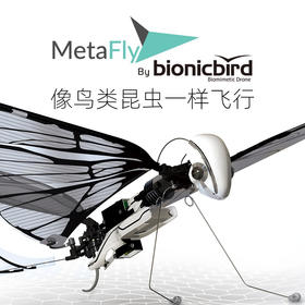 法国BionicBird遥控智能仿生鸟昆虫飞行器电动玩具机器小鸟