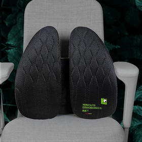 【德国研发减压腰垫】人体工学腰垫三弹簧Pro版