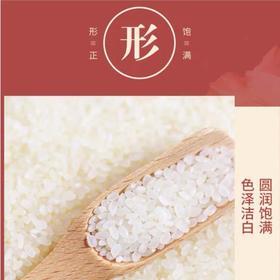 【买1份发2袋到手20斤】袁蒙海水稻盐碱地大米10斤装