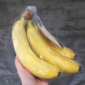 厄瓜多尔超甜蕉 | 软糯香甜,老少皆宜。