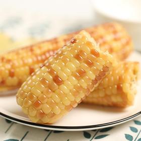 【精选】 香糯小玉米 | 米粒饱满 皮薄软糯 | 4-8斤装【应季蔬果】