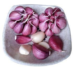 【精选】云南紫皮大蒜| 肉质白嫩 汁多味浓 | 5斤装【应季蔬果】