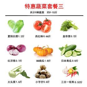 【精选】 蔬菜组合套餐B 【应季蔬果】
