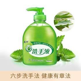 【精选】芦荟成人儿童通用洗手液 | 500g/瓶【个护清洁】